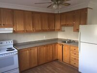 3 Bedroom Apartment near Beechwood
