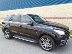 Mercedes-benz ml350 bluetech