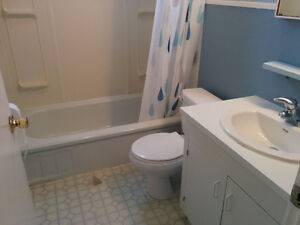 2 TUBS, TOILET, 2 SINKS FOR SALE