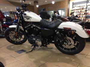 Pièces Harley Davidson 883