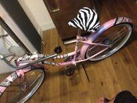 Pink and zebra print ladies cruiser bike