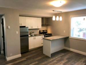 Beautifully renovated modern 1 Bedroom apartment available!