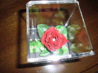 single preserved red rose in cube