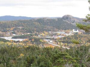 3/4 ACRE BOREAL FOREST ESTATE…38 DOCK RIDGE ROAD, AVONDALE. St. John's Newfoundland image 12