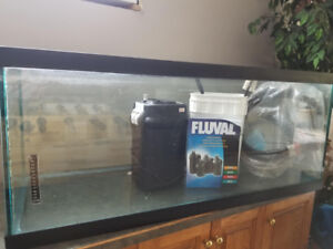 70 Gal Fish Tank and Filter for sale