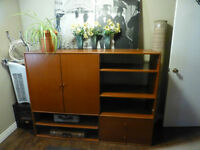 Solid Mahogany Wood Entertainment Unit