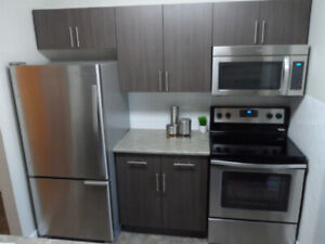 Modern 2 Bedroom Suite Available for June  1st , 2019