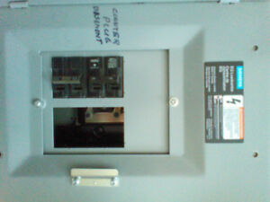 Electrical panels and main switch