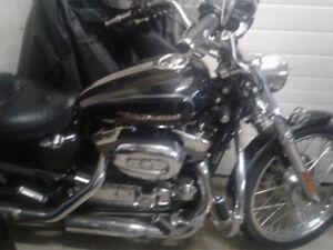 Harley Davidson costume sportster