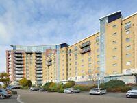 2 bedroom flat in Hanover Avenue, Royal Docks E16