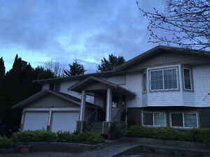 $950 / 2br - Fully furnished 2bdr basement for rent (Abbotsford