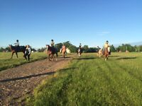 Western riding lessons