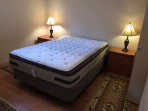 IMMEDIATE AVAILABILITY FULLY FURNISHED BASEMENT SUITE