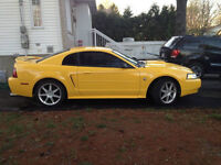 1999 Ford Mustang Coupe   3.8  manual