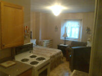 Clean, Quiet, Central, Furnished Bachelor Apt.  - Avail Aug 1