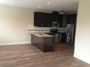 1 Bedroom Condo Downtown Parksville