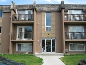 Nice spacious 2 bedroom apartments available..