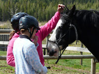 Confidence and Connection Horsecamps