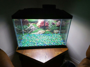 Selling our 20 gallon aquarium