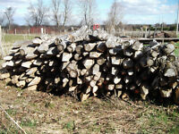 CEDAR FENCE POST FOR SALE