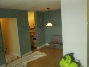 C & A CONTRACTING (INTERIOR / EXTERIOR PAINTING / SIDING ETC) St. John's Newfoundland image 9