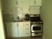 Byward Market - Renovated Bachelor - Utilities Included