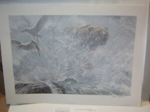 Robert Bateman REDUCED Endangered Spaces Grizzly