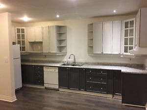 Newly renovated  basement apartment