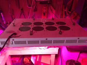 LED 300 watt