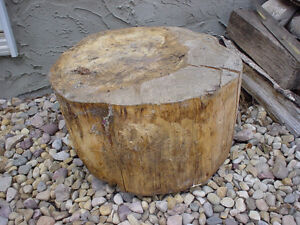 Stump for Stool/Table or Firewood