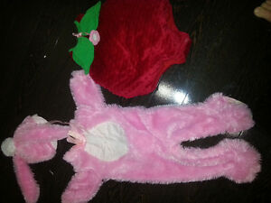 Bunny costume and strawberry costume 12-18months