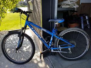Trek 820 mountain bike.