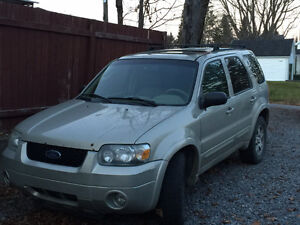 2005 Ford Escape limited Beige VUS