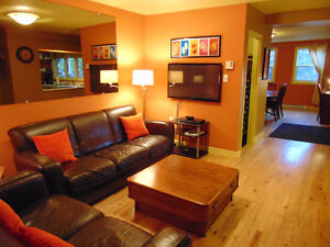 Spacious 2 bedroom Downtown Apartment