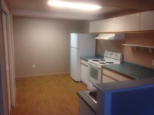 Two bedroom basement suite Shannon lake area.