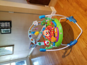 Fisher Price bouncer jumper