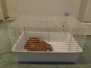 Cage for guinea pig, hamster or gerbil