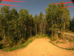Land for sale-private treed lot only 10 minutes to Stony Plain