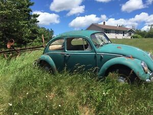 1964 Volkswagen Beetle, Barn Find