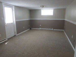 CLEAN AND BRIGHT 1 BDRM BASEMENT APARTMENT