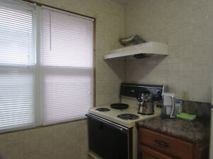 FEMALE ROOMMATE WANTED AT TWO BEDROOM APARTMENT Windsor Region Ontario image 4