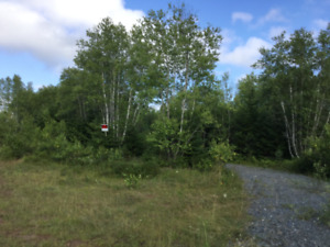 Residential Building Lot For Sale in Enfield!