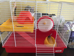Hamster/small animal cage