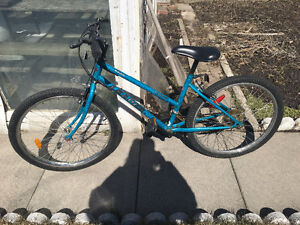 "24"" bike in Excellent condition"
