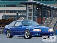 Looking for a mustang