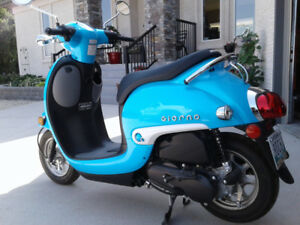 2016 Honda Giorno - Virtually New