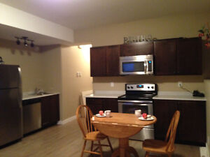 Beautiful bright walk out basement suite for rent!
