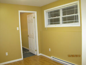 Bright 1 Bedroom in Paradise St. John's Newfoundland image 7