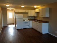 Large, Completely Renovated 2BDR Walk-up in Val Caron.