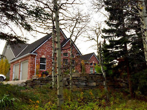 7.36 Acres Beautiful Home Just Before Castle Park Boundary